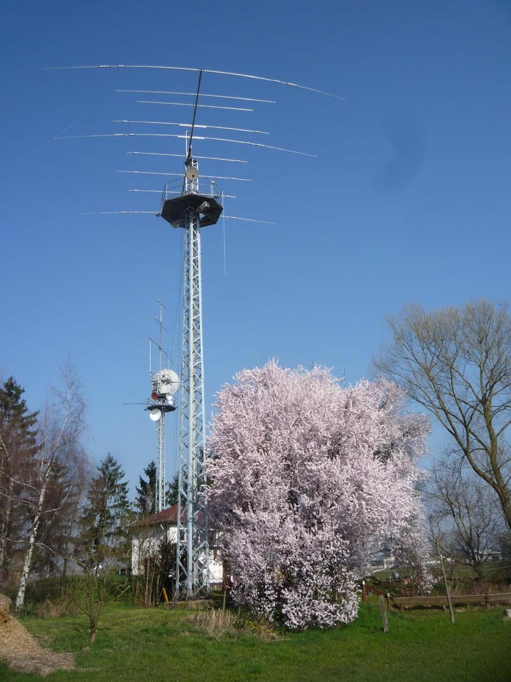 1000 - Wasserhaus Antenne und Blueten