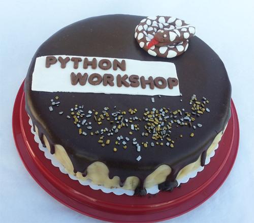 500 - Torte von Angelika Python Workshop